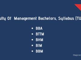 Bachelors Syllabus for Management (TU)