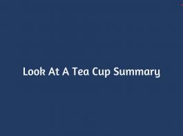 Look At A Tea Cup Summary